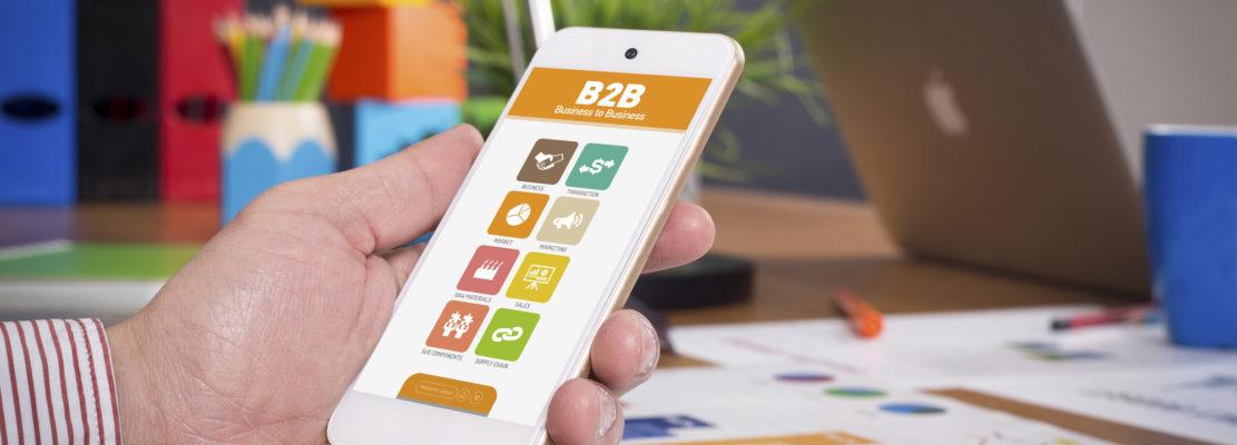 b2b mobile e-commerce branding industrial